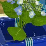 flowerbase14